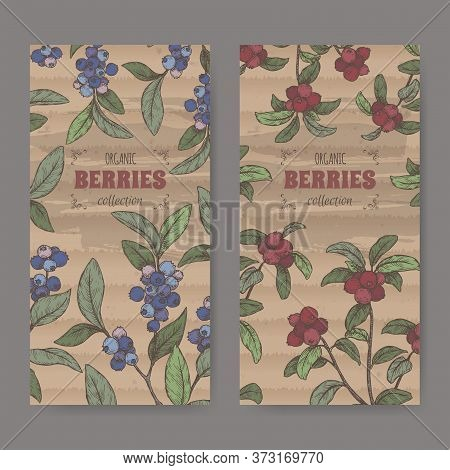Set Of Two Coor Labels With Blueberry Aka Vaccinium Corymbosum And Cranberry Aka Vaccinium Oxycoccos