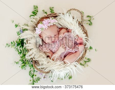 Sleeping newborn baby girl in a pink dress in a basket with flowers