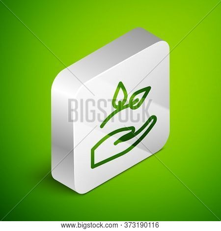 Isometric Line Leaf In Hand Of Environmental Protection Icon Isolated On Green Background. Seed And