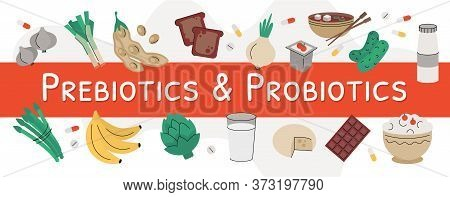 Flat Vector Illustration Of Probiotic And Prebiotic Products. Sources Of These Bacteria Is Nutrient