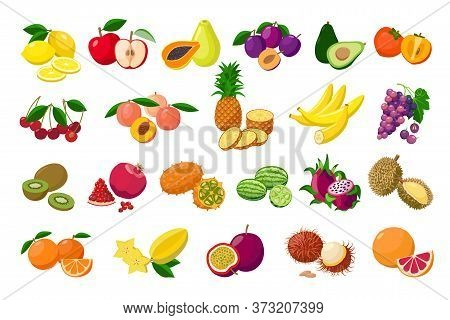 Large Fruit Collection Detailed Vector Illustrations Isolated On White Background. Juicy Pitaya, Dur