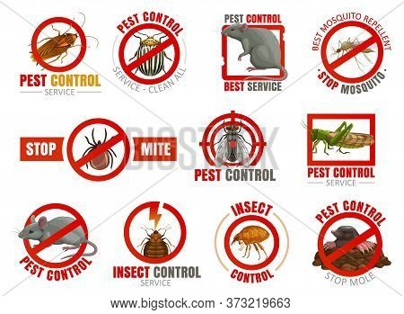 Pest Control Vector Icons With Insects And Animals. Mosquito, Cockroach, Mouse And Rat, Fly, Mite Or