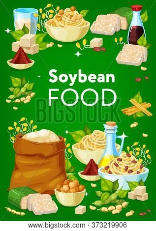 Soy Bean Food Products Of Soybean Processing. Vector Soya Milk, Oil, Tofu And Legumes, Tempeh, Miso