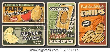 Potatoes And Tomatoes, Vegetable Farm Food Vector Posters. Potato Chips, Deep Fried Tornado Spiral A