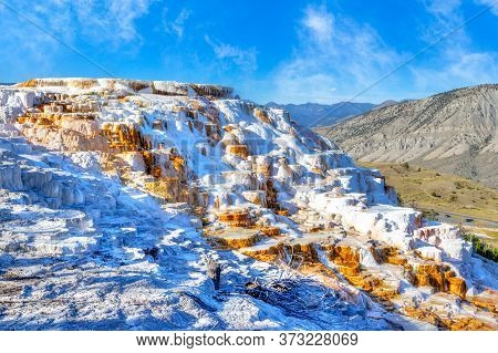 Water Cascades Over The Famous Travertine Terraces Of Canary Spring At Mammoth Hot Springs In Yellow