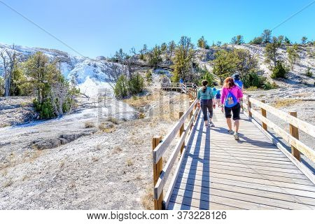 Wyoming, Usa - Aug. 28, 2019: Visitors Exploring The Lower Terraces Of Mammoth Hot Springs At Yellow