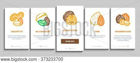 Nut Food Different Onboarding Mobile App Page Screen Vector. Peanut And Almond, Chestnut And Macadam