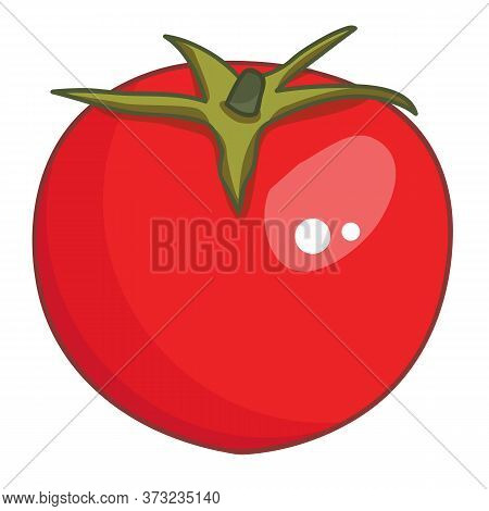 Red Tomato Isolated Illustration On White Background