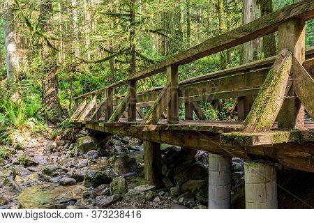 Wood Bridge In Forest Park In British Columbia Canada.