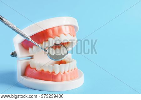 Teeth Model And Dental Mirror On Blue Background Close-up. Dental Care Concept. Copy Space.