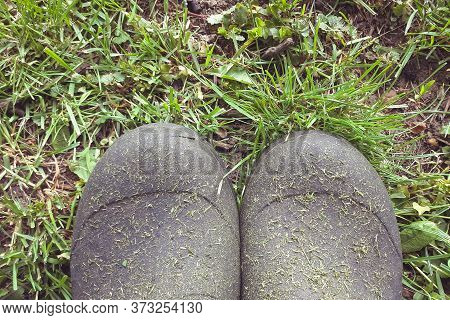 Dirty Wellies When Mowing Grass In The Countryside. Rain Boots On The Meadow. Top View.