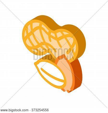 Peanut Nuts Icon Vector. Isometric Peanut Nuts Sign. Color Isolated Symbol Illustration