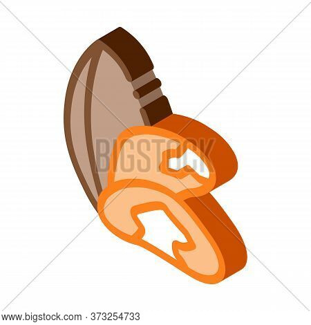 Brazil Nut Icon Vector. Isometric Brazil Nut Sign. Color Isolated Symbol Illustration