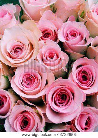 Abundant Pink Brides Bouquet