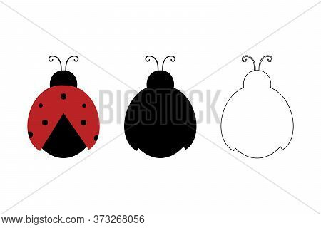 Coccinellidae, Ladybug Beetles Silhouette And Outline Design Elements Vector Icons Set, Collection.