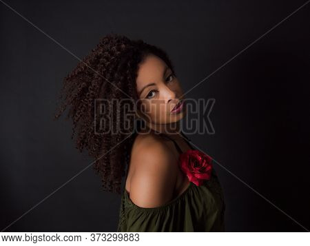 Horizontal Portrait Of An  Attractive African American Woman