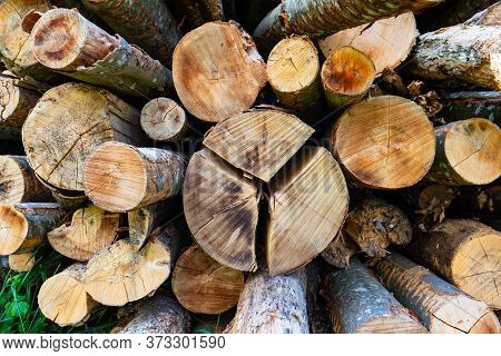 Woodpile With Log Split In Three Parts