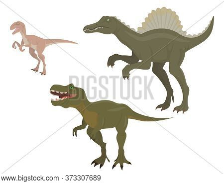 Set Of Predatory Dinosaurs. Velociraptor, Spinosaurus And Tyrannosaurus In Cartoon Style.