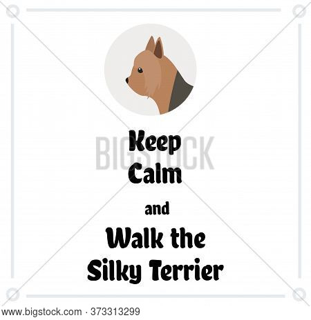 Keep Calm And Walk The Silky Terrier , Illustration On White Background