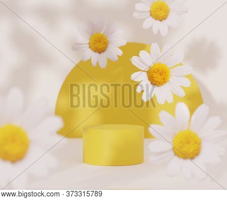 3d Podium Display With Daisy Field Flowers Levitating On White Background With Copy Space And Summer