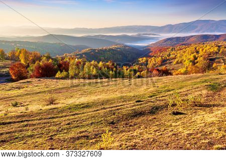 Autumnalrural Landscape At Sunrise. Trees In Colorful Foliage. Meadow With Yellow Grass. Distant Val