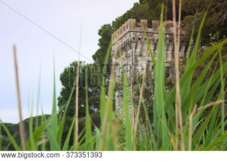 The Turret Of Villa Orlando On The Lake Massaciuccoli With Water E Vegetation