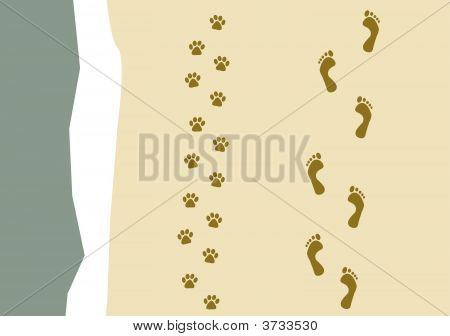 Walking The Dog Pattern