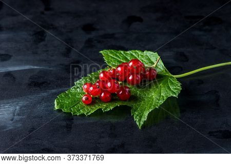 Red Currants On A Black Background. A Handful Of Red Currants Lies On A Green Leaf