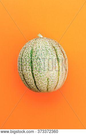 Honey Melon Or Cantaloupe Cucumis Melo. Japanese Melon On Orange Background. Summertime Fruits. Heal