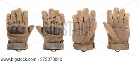 Military Gloves, Tactical Gloves, Protective Gloves Isolated White Background. Hunting Full Finger G