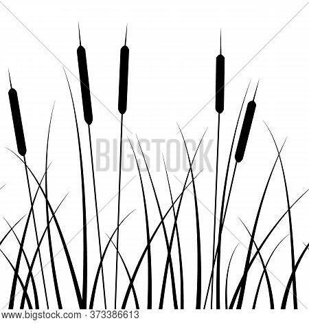 Seamless Pattern, With A Pattern Of Grass Silhouettes And Reed, In Monochrome Colors, Ornament For W