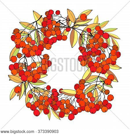 Wreath With Berries And Leaves Of Rowanberry, Background For The Inscription, Vector Illustration, I