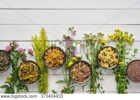 Medicinal Plants And Bowls Of Dry Medicinal Herbs On Wooden Table. Top View, Flat Lay. Alternative M