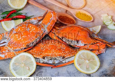 Jumbo Crab And Spices Herb On Dark Background
