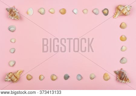 Along The Perimeter Of The Pink Background Are Different Shells. Four Large Corners