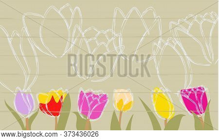Lovely Spring Tulip Flowers On Wooden Backdrop, Spring Holiday Postcard. Spring Flower Background Wi