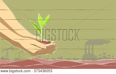 Environment Earth Day In The Hands Of Trees Growing Seedlings. Green Background Female Hand Holding