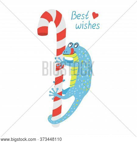 A Cute Blue Gecko Is Hanging On A Red Candy Cane. It\'s Happy And Wants To Eat Sweets. Best Wishes H