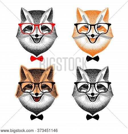 Portrait Of A Fox With Glasses. Fox With Bow Tie. Fox Hipster. Set Of Portraits Of A Fashionable Fox