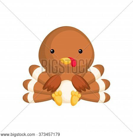 Cute Baby Turkey Sitting Isolated On White Background. Adorable Animal Character For Design Of Album