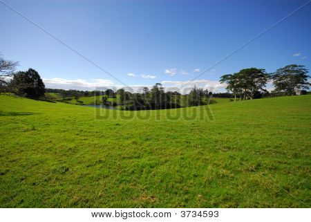Country View With Pond