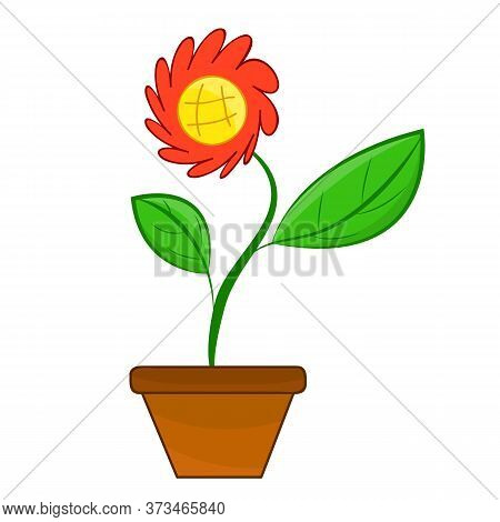 Flower Isolated Illustration On White Background. Vector