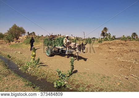 Nile River / Sudan - 23 Feb 2017: The Cart In The Small Village On Nile River, Sudan