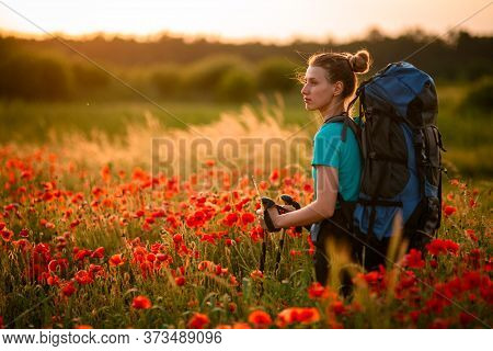 Beautiful Woman With Backpack And Walking Sticks Stands On Field Of Poppies And Looks Away