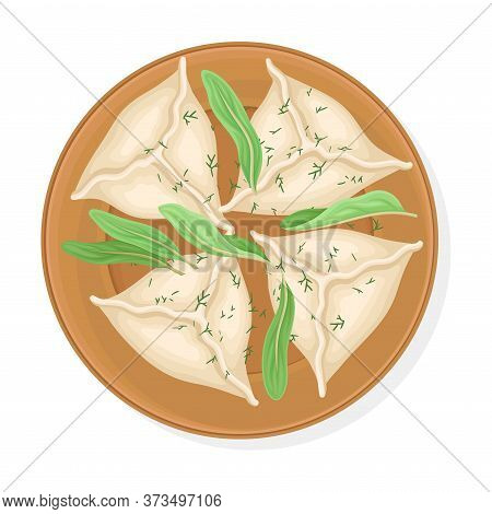 Cooked Dumplings Served On Plate With Greenery And Sauce Top View Vector Illustration