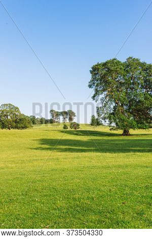 The Open Parkland Of Dallam Park On A Sunny Evening Milnthorpe, Cumbria, England
