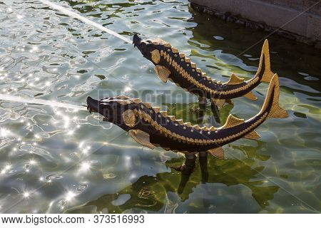 Figures Metal Fish Sturgeon With A Jet Of Water Fountain Stone Flower On A Sunny Day. Moscow Attract