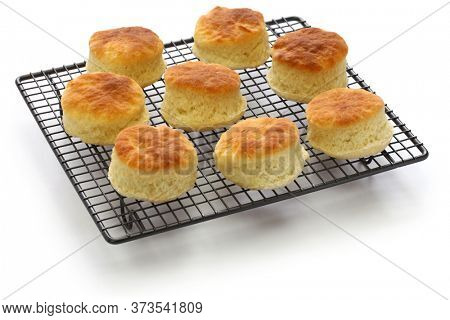 freshly baked buttermilk biscuits on cooking wire rack