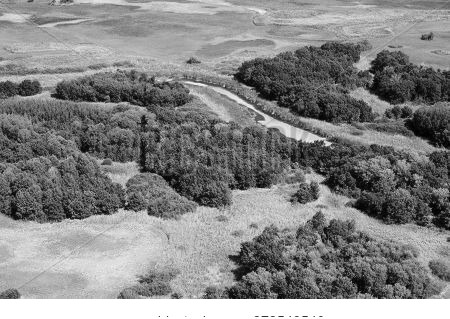 Aerial View Of Forest During