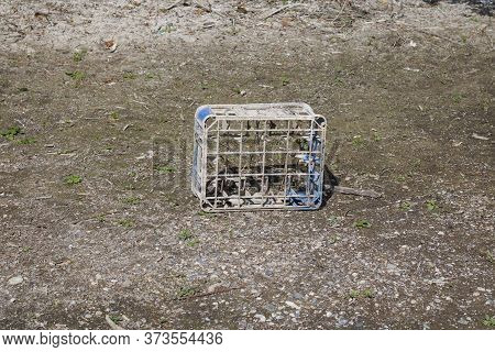 Old Plastic Milk Crate On Muddy Dry River Bed With Copy Space